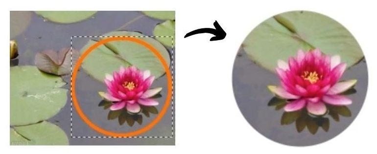recorte circular inkscape